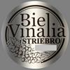 Biel Vinalia (2017) - strieborná medaila